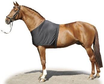 Vesta pro koně